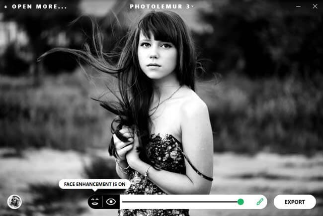 photolemur 3 interface